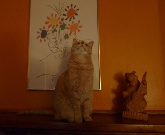 Sweetpea and friend regale us from atop the mantle. Art is life, life is art, cats is cats.