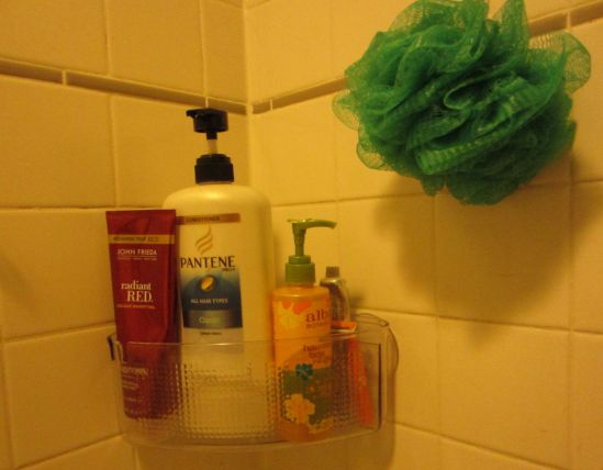 """We bought these little suction cup balconies for the shower and they are smart, but our housemate complains when I chant, """"Evita! Evita!"""" at my haircare products."""