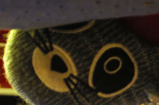 The slippers, they stare with eyes that have seen up your pant leg.