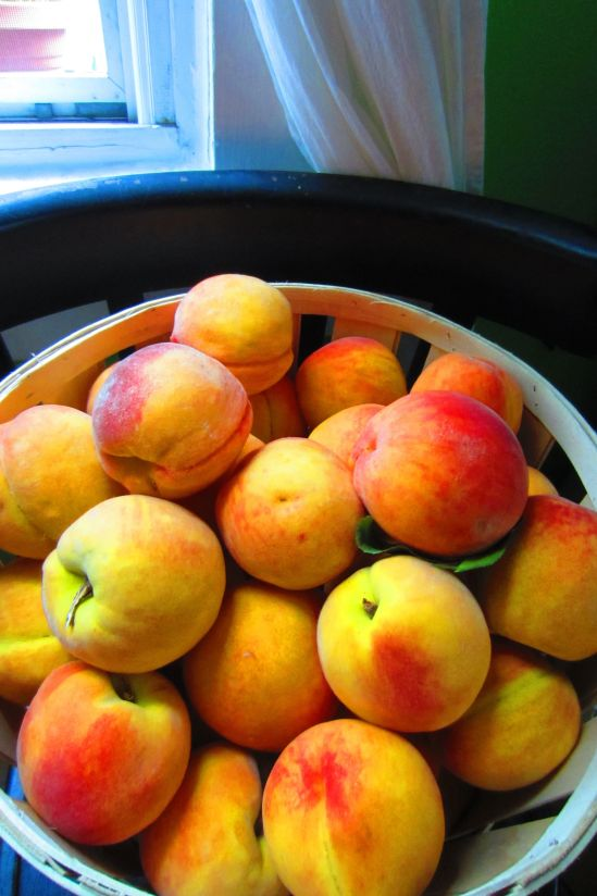 Peaches, ready to strip down and skinnydip in spicy syrup.