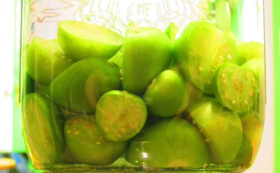 Tomatillos infusing vodka because Christmas really is coming.
